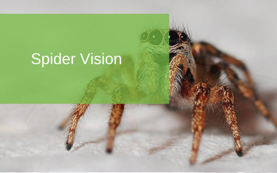 Spider Vision
