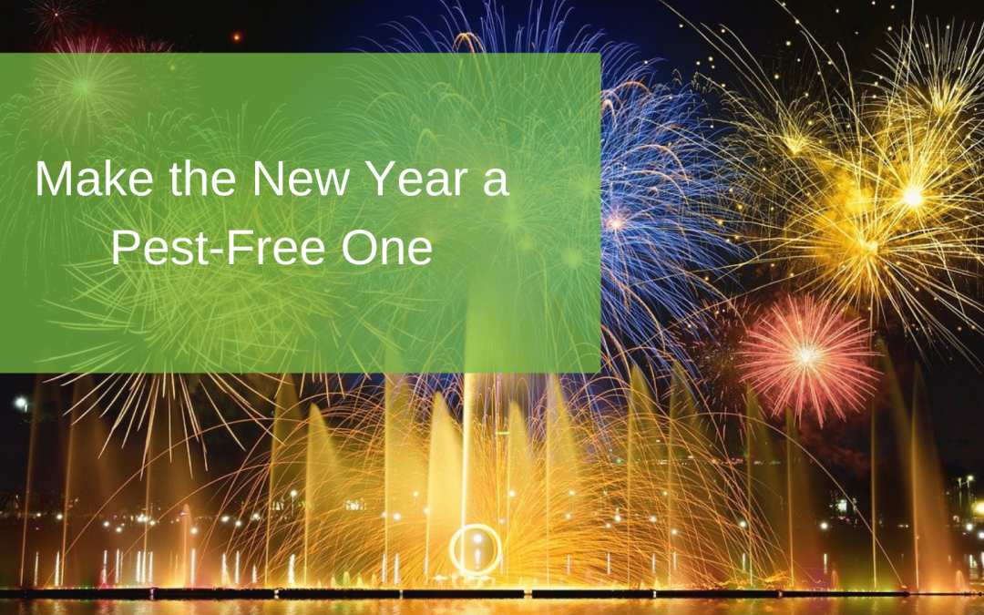 Make the New Year a Pest-Free One